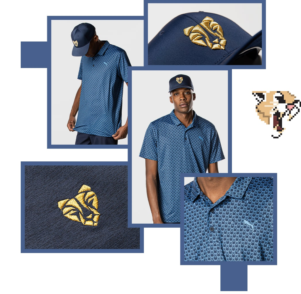 Roar Product Collage 1